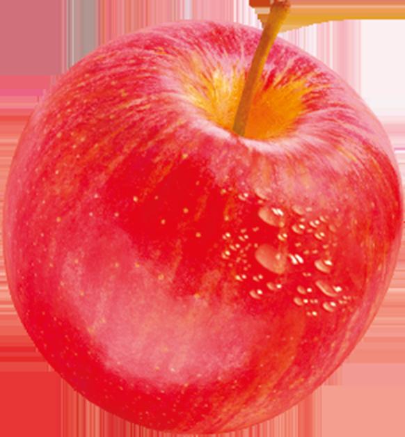 Chez Danao, nos pommes côtoient des <span>bourdons</span> et des <span>mésanges</span>